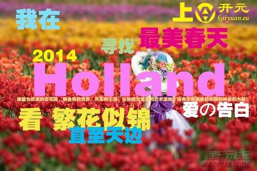 tesselaar-tulip-festival-kid-in-field1_副本.jpg