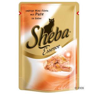 132141_sheba_essence_pute_1.jpg